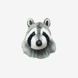 Djurhuvud tvättbjörn