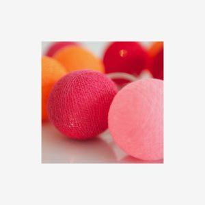 Ljusslinga Rosehip, 20 bollar