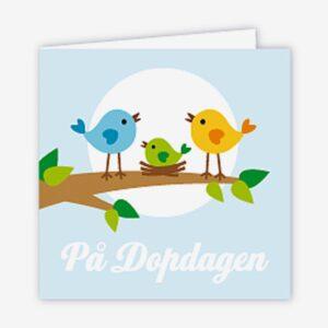 Paketkort dop, fågelfamilj