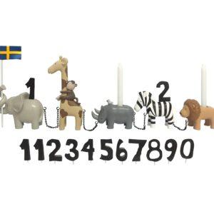 Födelsedagståg safaridjur