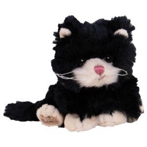 Katt bambo